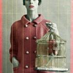 A cage in cage in a cage.../Una jaula en una jaula en una jaula...  Jorge Bucay. Diario Levante, Diario de Mallorca, etc. 2005