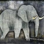 The memory of an elephant/ Memoria de elefante.  Jorge Bucay. Diario Levante, Diario de Mallorca, etc. 2009